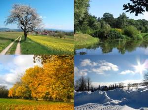 Four_seasons