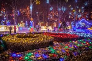 festival-of-lights-resized
